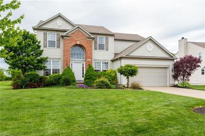 North Ridgeville Single Family Home For Sale: 38454 Terrell Dr