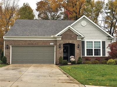 Twinsburg Single Family Home For Sale: 2963 Darlene Court