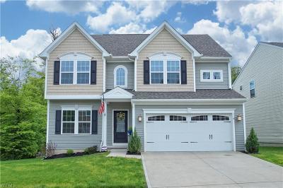 Brunswick Single Family Home For Sale: 119 Fenwick Dr