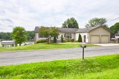 Single Family Home Active Under Contract: 32173 Wisner Road