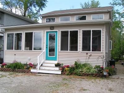 Chippewa Lake Single Family Home For Sale: 111 Lakeview Court