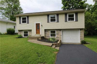 Austintown Single Family Home For Sale: 3967 New Road