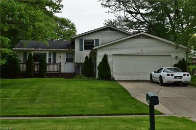 Medina Single Family Home For Sale: 940 Concord Dr