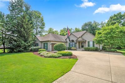 Canfield Single Family Home For Sale: 20 Laurel Hills Lane