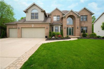 Strongsville Single Family Home For Sale: 22169 Yarrow Trail