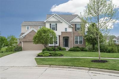 Strongsville Single Family Home For Sale: 9330 Ellis Way