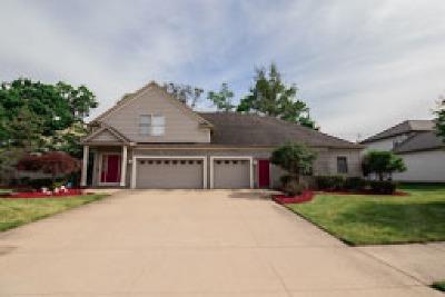 Seven Hills Single Family Home For Sale: 820 E Dawnwood Drive
