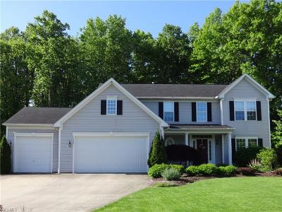Twinsburg Single Family Home For Sale: 1860 Parker Lane
