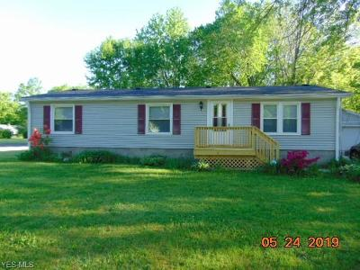 Painesville Single Family Home For Sale: 115 Kenilworth Ave