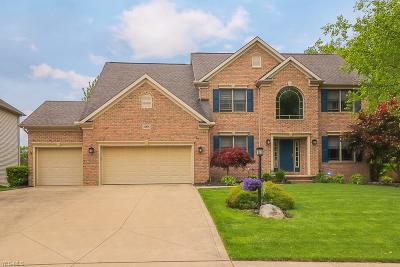 Strongsville Single Family Home For Sale: 18876 Glen Cairn Way
