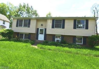 Warren Single Family Home For Sale: 2126 Colonial Street