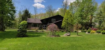 Chagrin Falls Single Family Home For Sale: 18908 High Point Road