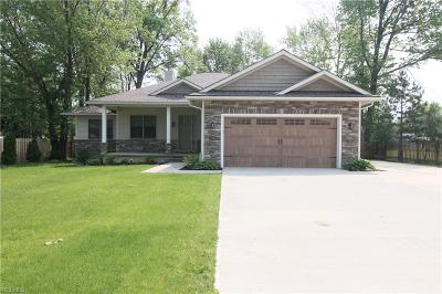 Avon Lake Single Family Home For Sale: 133 Avon Belden Road