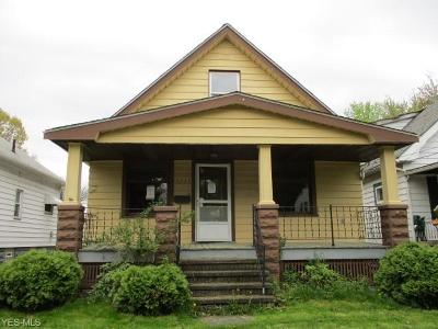 Cleveland Single Family Home For Sale: 3223 Bader Ave