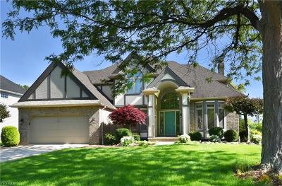 Westlake Single Family Home For Sale: 30270 Greenview Pky