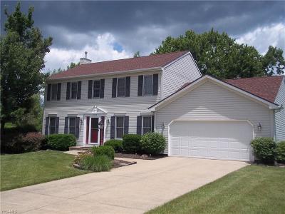 Medina County Single Family Home For Sale: 605 Southbridge Boulevard