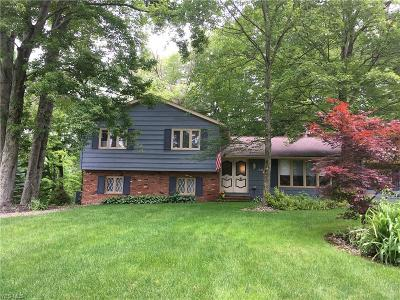 Solon Single Family Home For Sale: 6385 Creekside Trail