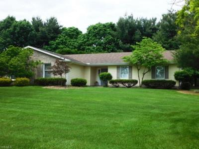 Canfield Single Family Home For Sale: 3614 Tyler Drive