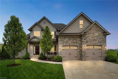 Single Family Home For Sale: 4169 Restivo Circle