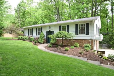 Strongsville Single Family Home For Sale: 19690 Albion Rd