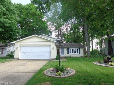 Elyria Single Family Home For Sale: 173 Timberlane Drive