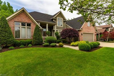 Strongsville Single Family Home For Sale: 10235 Versailles
