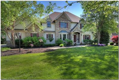 Solon Single Family Home For Sale: 38410 Flanders Drive