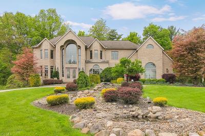 Brecksville Single Family Home For Sale: 2579 Crane Creek