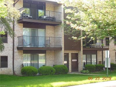 Middleburg Heights Condo/Townhouse Active Under Contract: 16435 Heather Lane #S203
