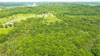 Guernsey County Residential Lots & Land For Auction: Johns Lane