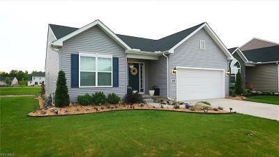 North Ridgeville Single Family Home Active Under Contract: 6814 High Perch Drive