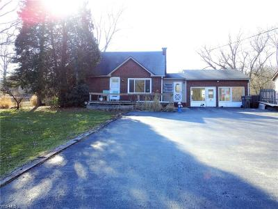 Youngstown Single Family Home For Sale: 1516 Coitsville Hubbard Road