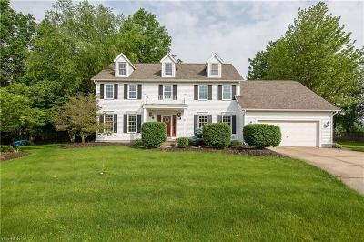 Medina County Single Family Home Active Under Contract: 935 Countryside Drive