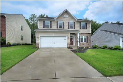 Twinsburg Single Family Home Active Under Contract: 10130 Flagstone Drive