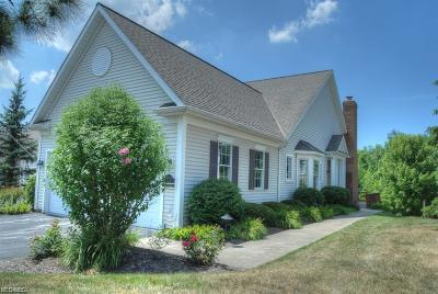Chagrin Falls Condo/Townhouse For Sale: 16840 Knolls Way
