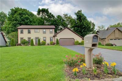 Poland Single Family Home Active Under Contract: 3465 Hummingbird Hill Drive