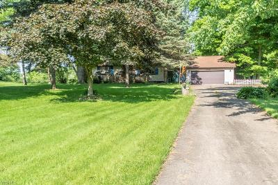 Canfield Single Family Home For Sale: 11760 Green Beaver Road