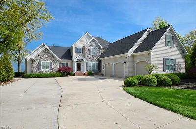 Avon Lake Single Family Home For Sale: 33790 Lake Road