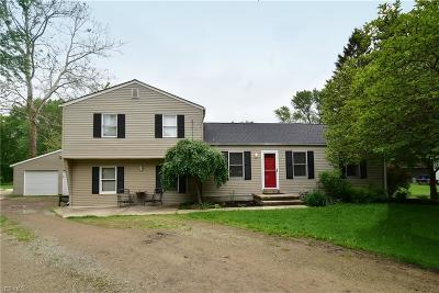 Elyria Single Family Home Active Under Contract: 38536 E River Road