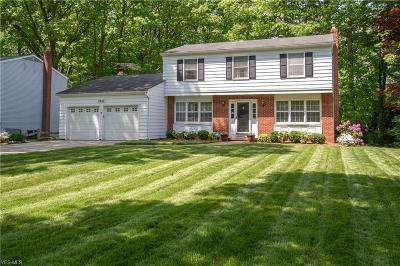 Solon Single Family Home For Sale: 5940 Buckboard Lane