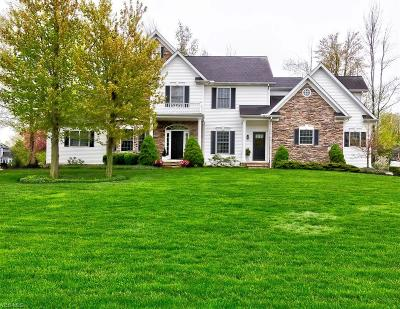 Lake County Single Family Home For Sale: 10644 Nobhill Lane