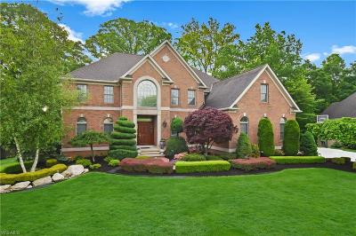 Broadview Heights Single Family Home For Sale: 8993 Crooked Creek Lane