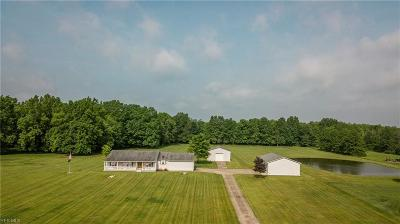 Mahoning County Single Family Home Active Under Contract: 6860 S Pricetown Road