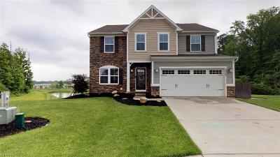 Twinsburg Single Family Home Active Under Contract: 10360 Flagstone Drive