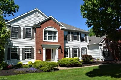 Hudson Single Family Home Active Under Contract: 7087 Colesbrooke Drive