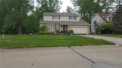 Lorain Single Family Home Active Under Contract: 674 Appleseed Drive