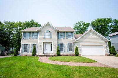 Girard Single Family Home Active Under Contract: 5462 Logan Arms Drive