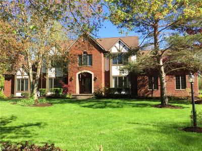 Hudson Single Family Home For Sale: 6775 Saint Ives Boulevard