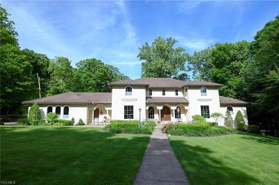 Lake County Single Family Home For Auction: 8845 Sanctuary Drive