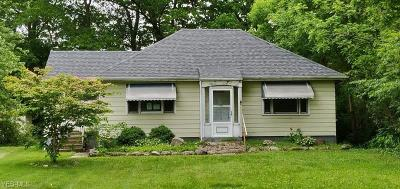 Painesville Single Family Home For Sale: 4 Center Street